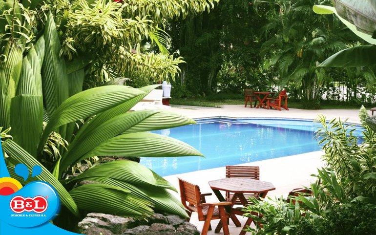 Cinco dicas essenciais para escolher as plantas para a for Plantas para piscinas